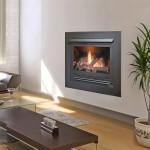 Heat-&-Glo-350-TRSI-Gas-Log-Fire