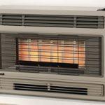 Rinnai 2001 Gas Heater