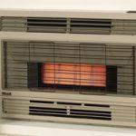 rinnai heat_flued_spectrum